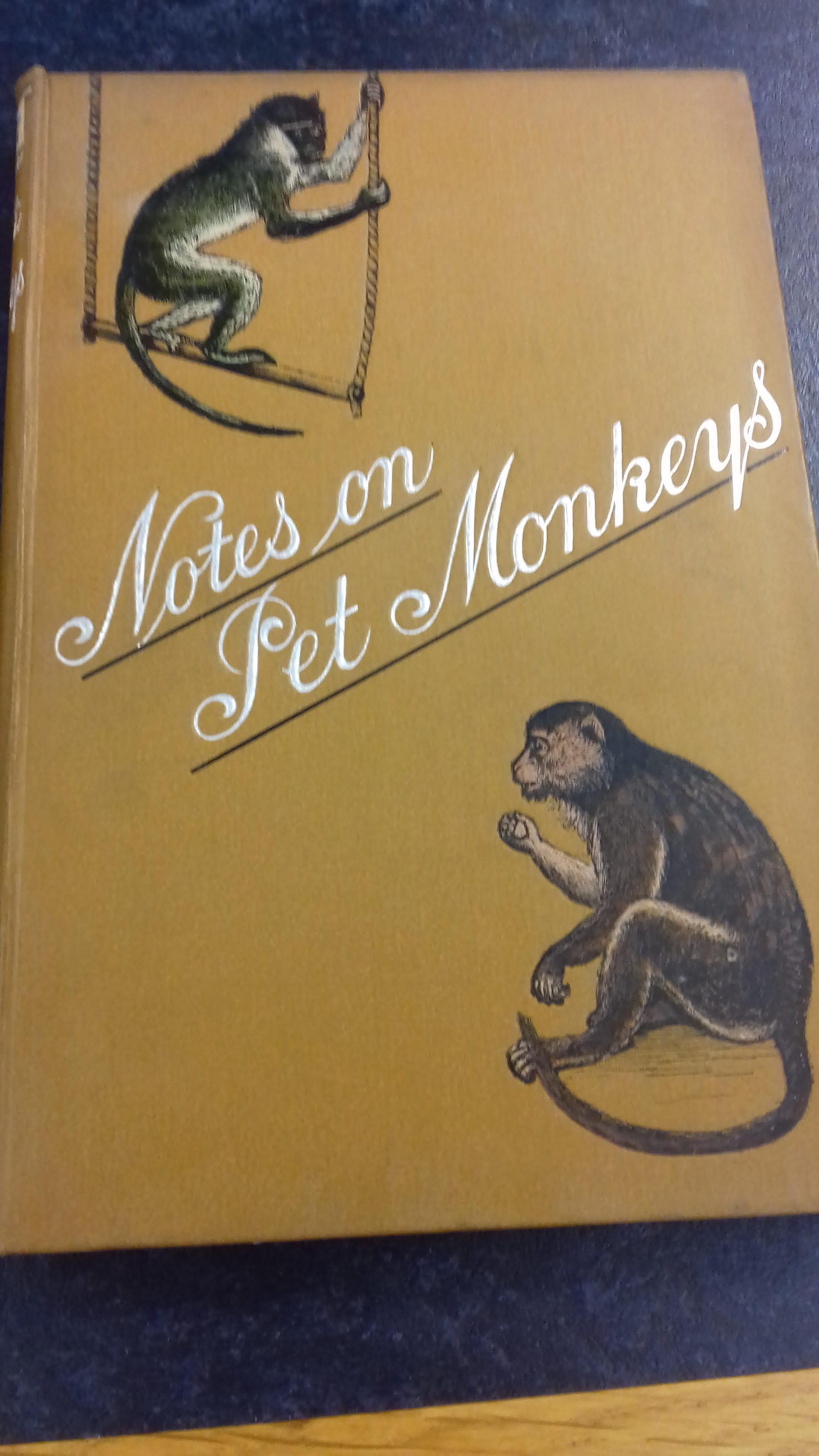 The cover of Notes on Pet Monkeys by Arthur Patterson (1888)